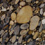 Golden Marinace Granite
